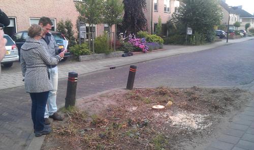 Bewoners met een brief van de gemeente bij de plek waar de aangevreten boom stond.