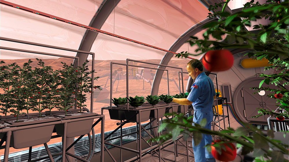 Artist impression van één van de labs waar op Mars groenten moeten worden gekweekt. Foto: NASA.