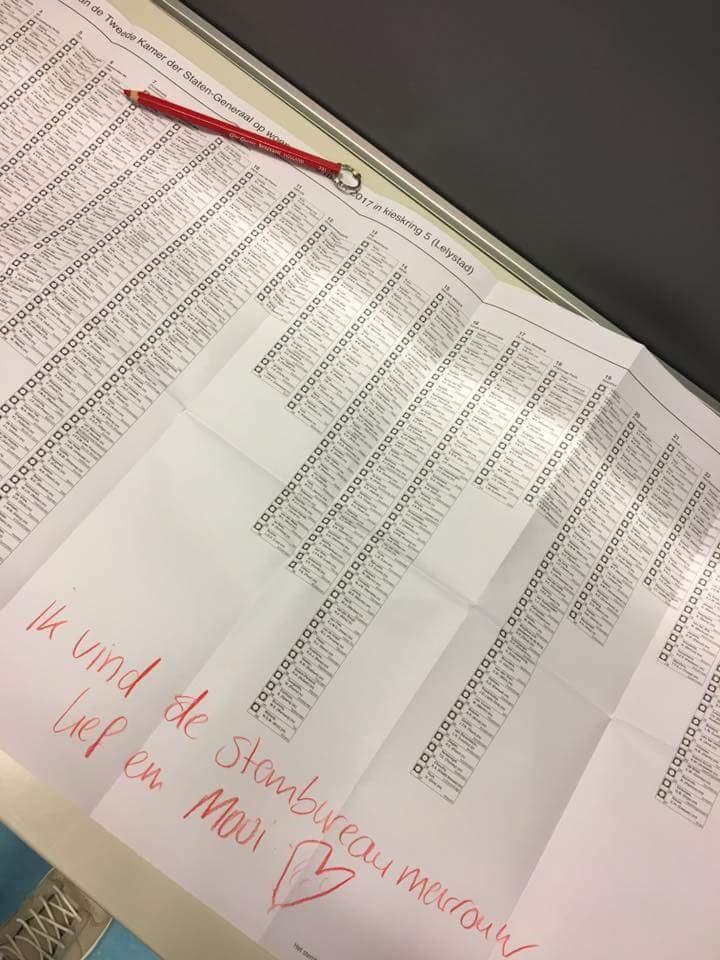Een Stembiljet Goed Invullenhet Valt Nog Niet Mee Omroep Gelderland